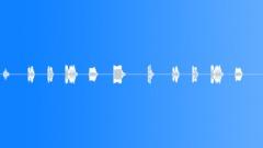 AUTO, HORN - sound effect