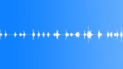BATS Sound Effect