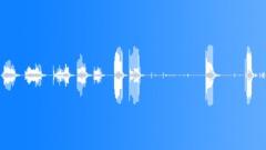 BAT Sound Effect
