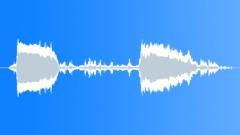 BIRD,HAWK Sound Effect