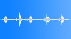 BIRD,PIGEON Sound Effect