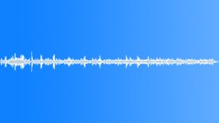 BIRD,BLUE,TIT Sound Effect