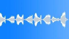 BIRD, CHIRP - sound effect