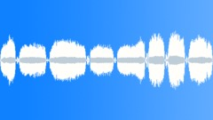 BIRD, COCKATOO - sound effect