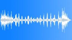 BIRD, DUCKS - sound effect