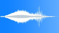 BIRD, GEESE - sound effect
