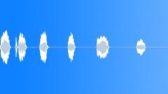 BIRD, GOOSE - sound effect