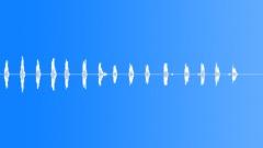 BIRD,GOOSE - sound effect