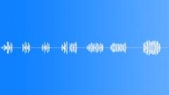 BIRD,GREAT,TIT - sound effect