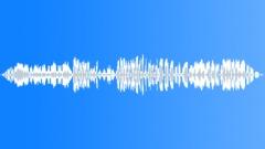 BIRD, HAWK - sound effect