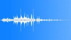BIRD, PIGEON - sound effect