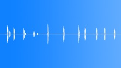 BIRD, RAVEN, COMMON - sound effect
