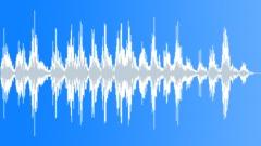 BIRD, TURKEY - sound effect