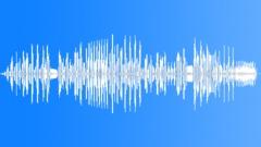 BIRD, WREN - sound effect