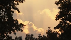 Sunset sky with time lapse clouds framed with oak trees silhouettes - stock footage