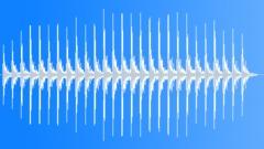 BIRD, WOODPECKER Sound Effect