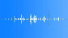 BONE, CRUNCH Sound Effect