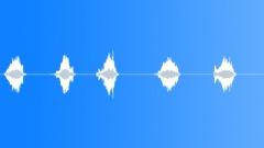 BRUSH,WIRE Sound Effect