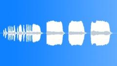 BUGLE, MILITARY Sound Effect
