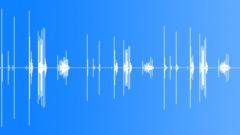 CAN,SPRAY - sound effect