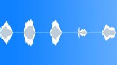 CAT - sound effect