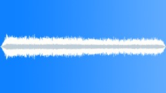 CATTLE - sound effect