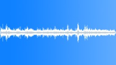 CHILE,MARKET - sound effect