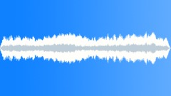 CICADAS - sound effect