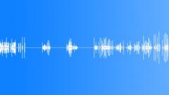 COMPUTER, KEYBOARD - sound effect