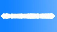 CRICKET - sound effect