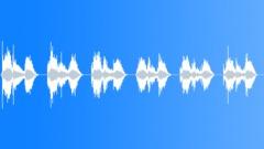 CROWD,CHANT Sound Effect