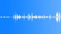 CROWD,INDOOR - sound effect