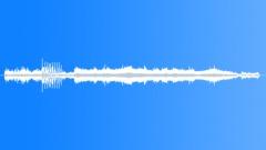 DUCKS - sound effect