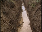 Walking in the trenches 3 Stock Footage