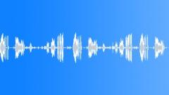 ELK - sound effect