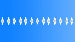 FROG,BULLFROG - sound effect