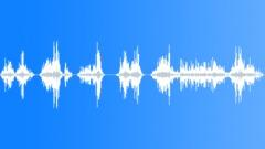 GIRAFFE Sound Effect