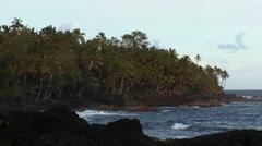 Waves breaking in Hawaiian beach 2 Stock Footage