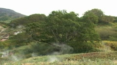 Meadow with geysers Stock Footage