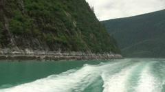 Tracy Arm, Sawyer glaciers j Stock Footage