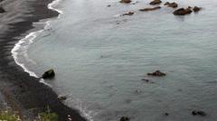 Scenic Pan Alaskan Shore Stock Footage