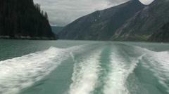 Tracy Arm, Sawyer glaciers s Stock Footage
