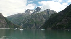 Tracy Arm, Sawyer glaciers x Stock Footage