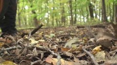 Close up of man stepping on leaves Stock Footage