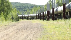 Scan of section the Alaskan pipeline (HD) c - stock footage