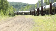Stock Video Footage of Scan of section the Alaskan pipeline (HD) c