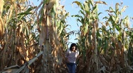 Stock Video Footage of A woman comes out of a maize field