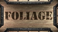 Foliage on wooden stamp Stock Footage