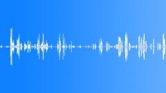 HUMAN, BABY - sound effect