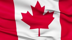 Stock Video Footage of Realistic 3d seamless looping Canada flag waving in the wind.
